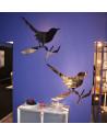 Spiegel Driade Teylor Bird e Snijder Bird