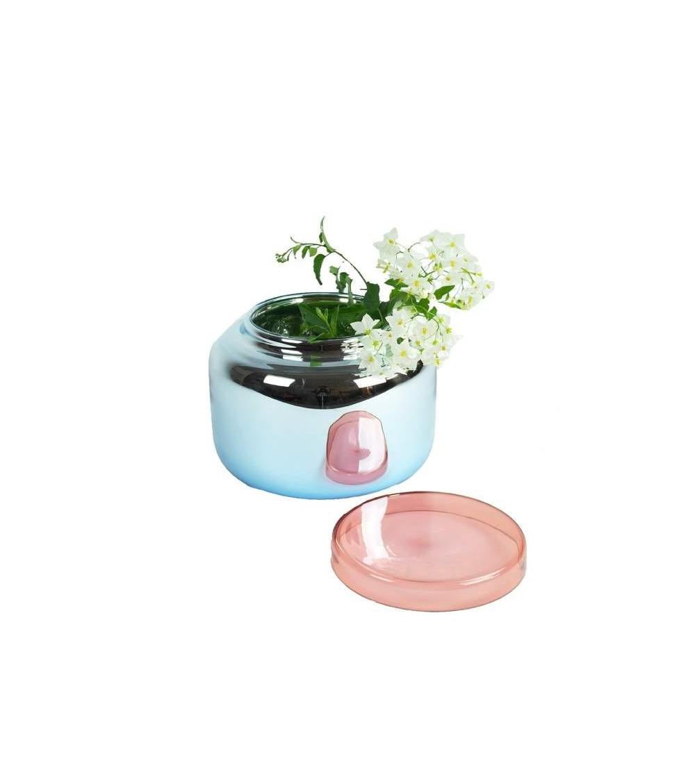 florero Container Pulpo Low