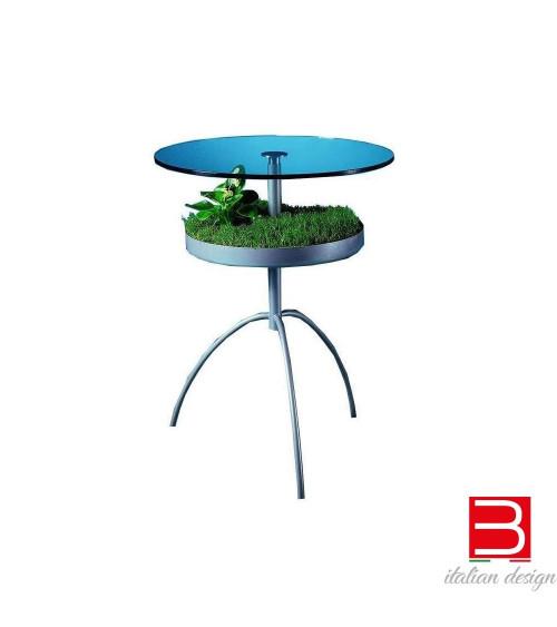 Tavolino Progetti 25 Th Patgreen