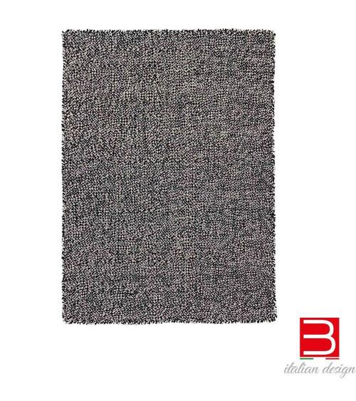Carpet Gan Spaces Waan