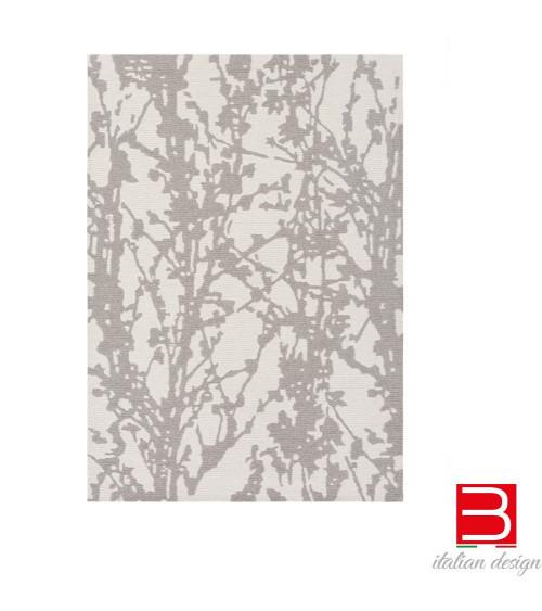 Carpet Gan Branch