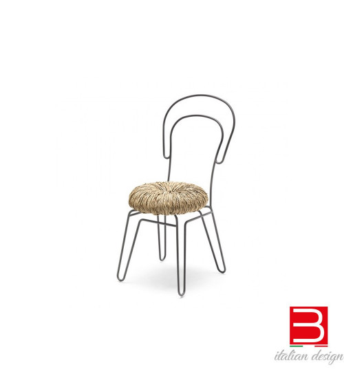 Chair mogg Donut