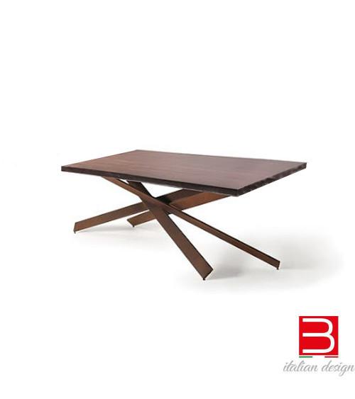 Table Reflex Mikado Bevel Wood