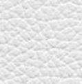 Pelle bianco 179