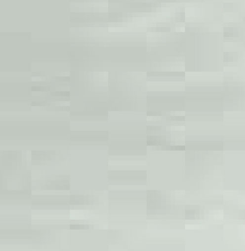 faggio tinto turchese