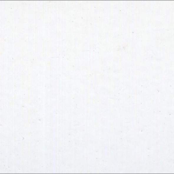 LM01 Bianco opaco