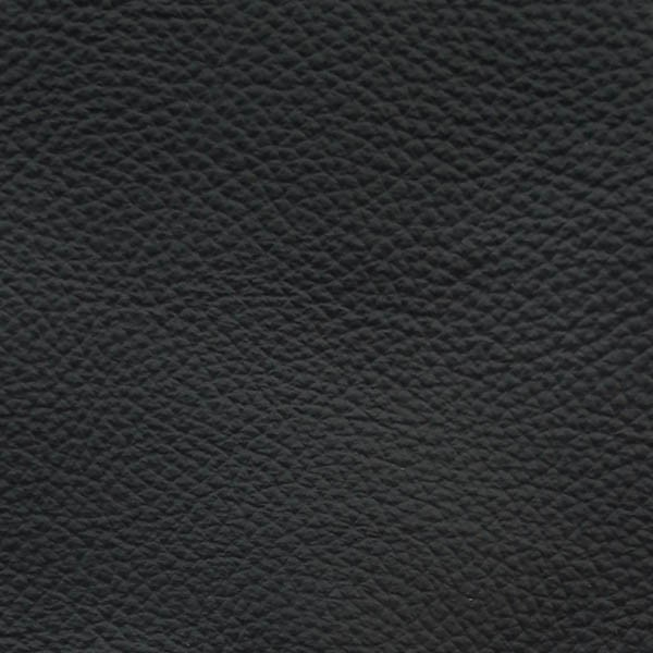 P18 Leather Grafite